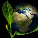 Logo del grupo Biología